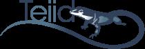 teiid-logo